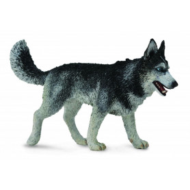 Collecta 88707 Husky