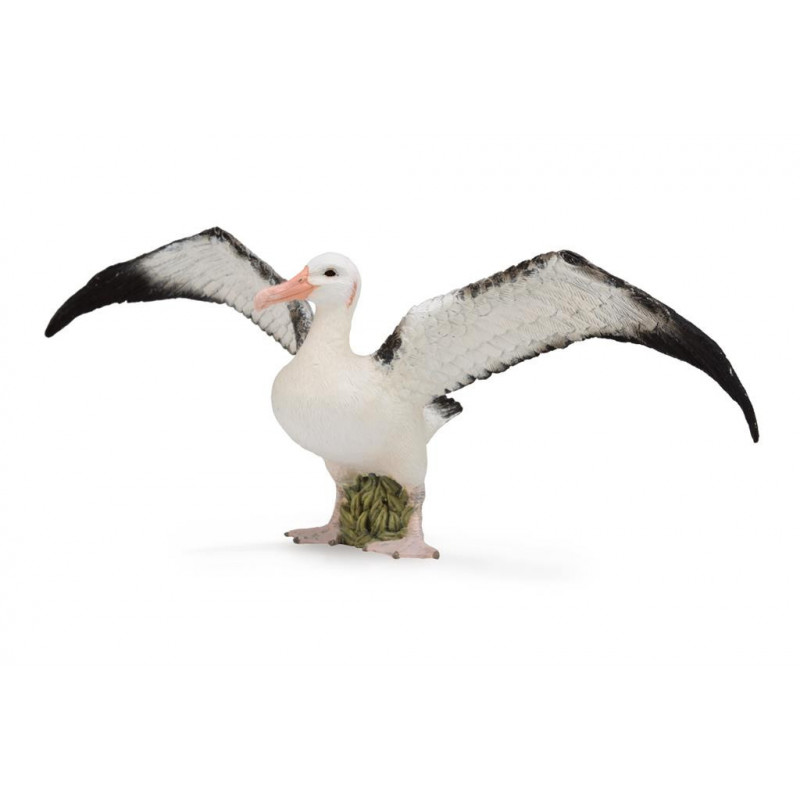 Collecta 88765 Albatros Hurleur