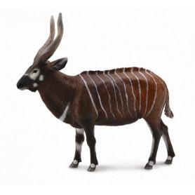 Collecta 88809 Bongo Antelope