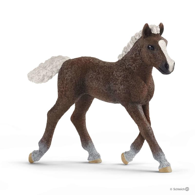 Schleich 13899 Black Forest Foal