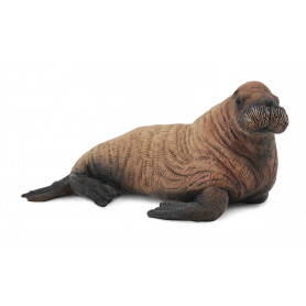 Collecta 88570 Walruskalf