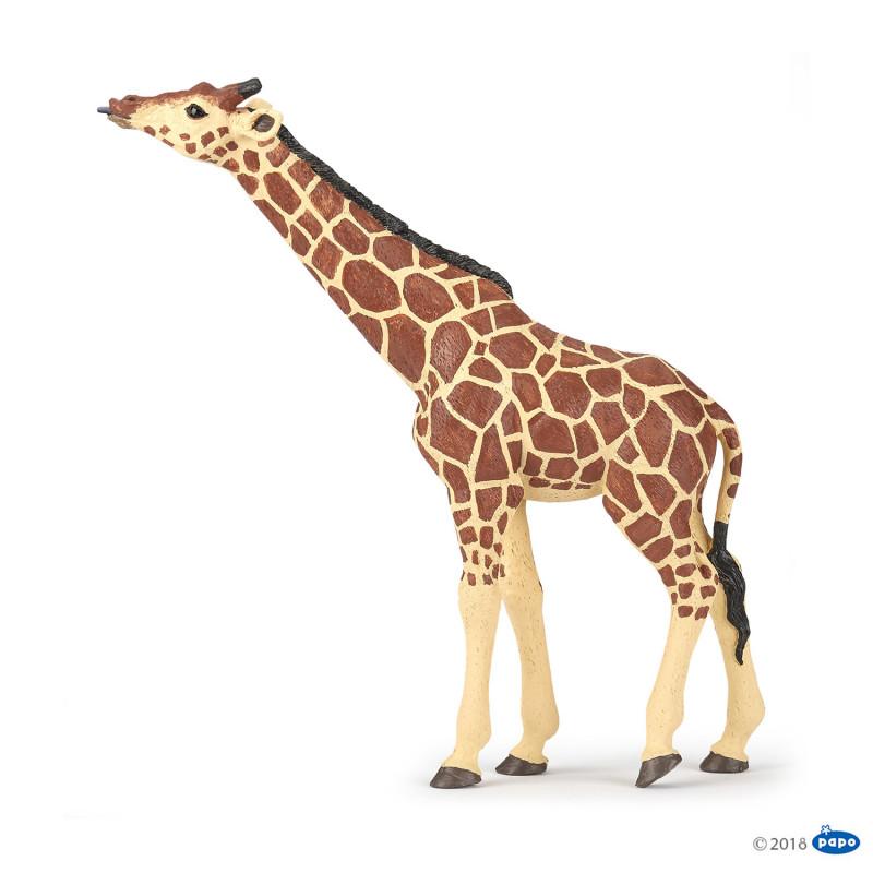 Papo 50236 Giraf drinkend