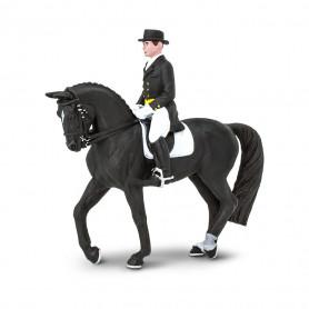 Safari 151105 Dressuur ruiter op paard (James on Dancing Bells Set)