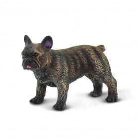 Safari 100304 FFranzösische Bulldogge
