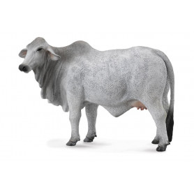Collecta 88580 Brahman Cow