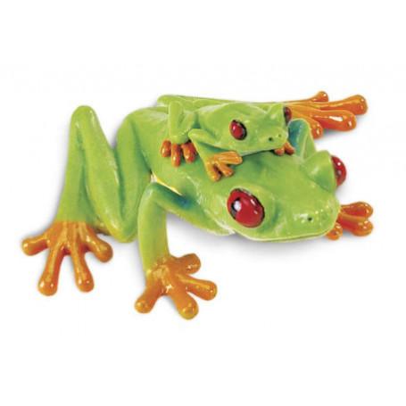 Safari 100120 Red-Eyed Tree Frog