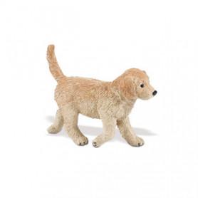 Safari 253229 Golden Retriever Pup