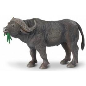 Safari 222729 Buffel