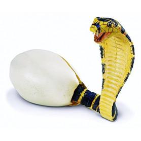 Safari 258529 Cobra Hatchling