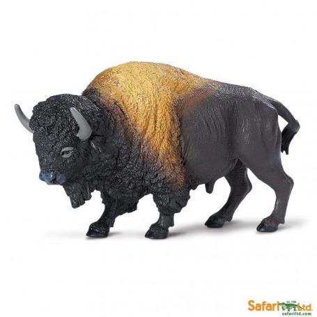 Safari 290829 Bison