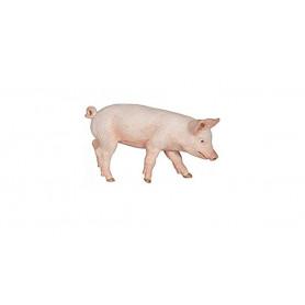 Papo 51137 Male Piglet