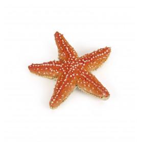 Papo 56050 Starfish