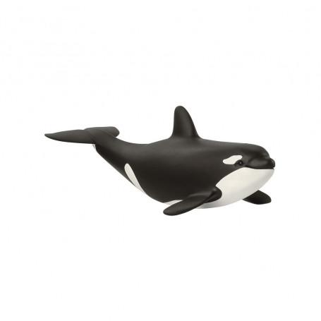 Schleich 14836 Baby Killer Whale