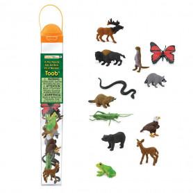 Safari 685504 Mini Themengebiet in der Wäldern und Wiesen (12 pieces)