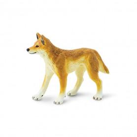 Safari 228229 Dingo