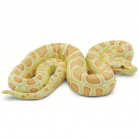 Safari 100250 Albino Birmese Python