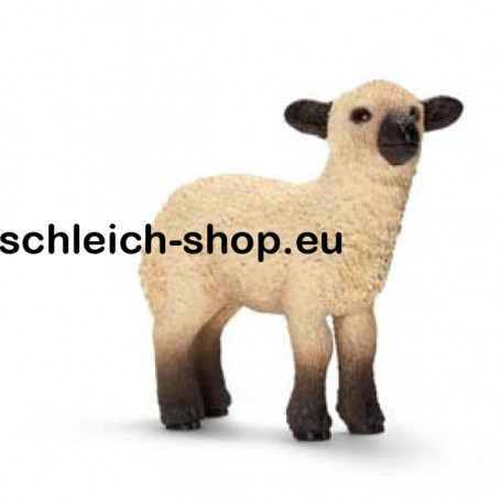 Schleich 13682 Schleich 13682 Shrop shire lamb (Ovis aries)
