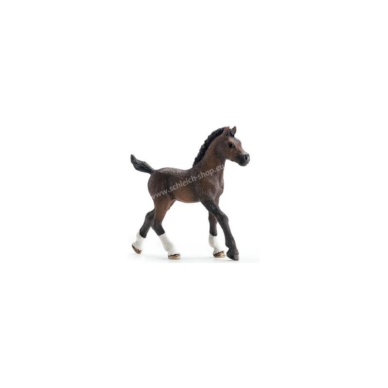 Schleich 13762 Arabian Foal
