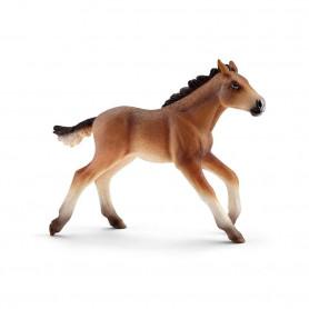Schleich 13807 Mustang veulen