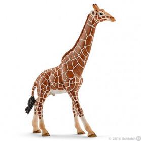 Schleich 14749 Giraf Mannelijk