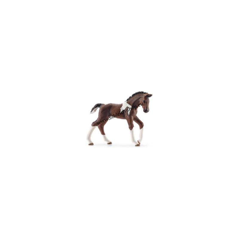 Schleich 13758 Trakehnen veulen