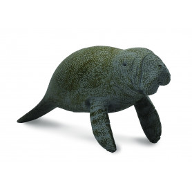 Collecta 88456 ZManatee Calf swimming