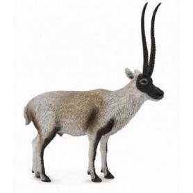 Collecta 88721 Antilope Du Tibet