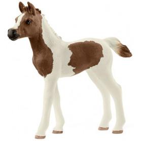 Schleich 13839 Pintabian Foal