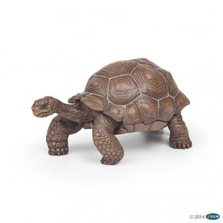Papo 50161 Galapagos Schildpad
