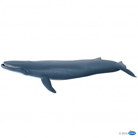 Papo 56037 Blauwe Walvis