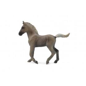 Collecta 88799 Rocky Mountain Foal